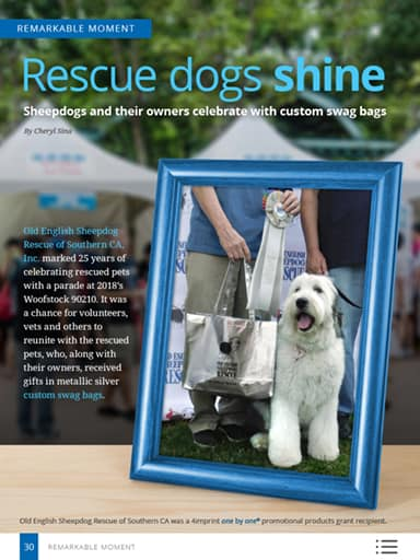 Remarkable Moment thumbnail: Rescue dogs shine