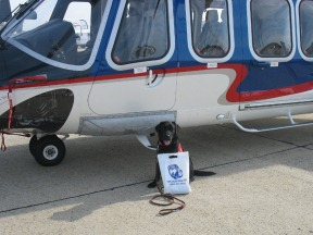 Hero Dogs Inc l one by one charitable giving program l 4imprint