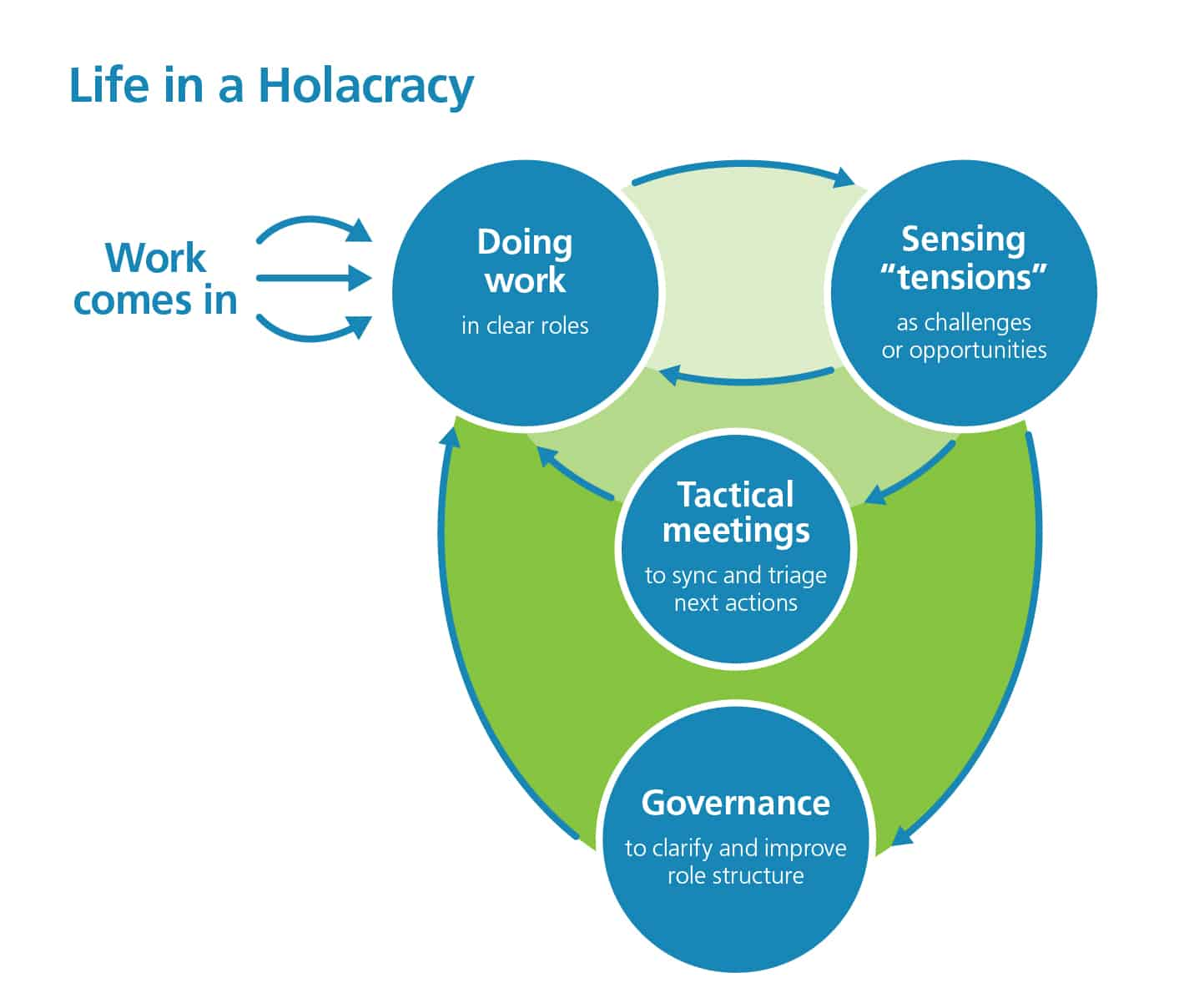 Circle graph showing life in a holacracy