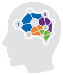 amplify promotional products magazine - Brain image - the effects of storytelling on the brain.