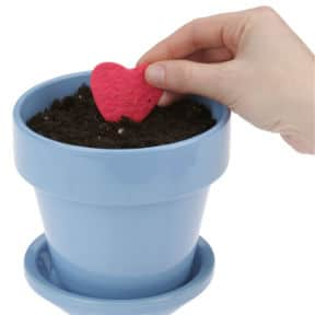 A person places a red Plant-a-Shape Heart from 4imprint in a flower pot.