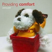 Black and white stuffed dog in a red box